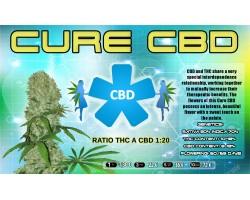 CURE CBD