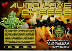 AUTO LOVE CHEESE