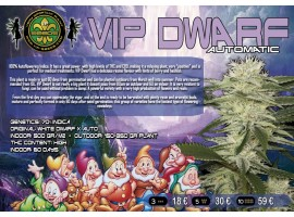 VIP DWARF Аuto