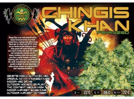 GHINGIS KHAN
