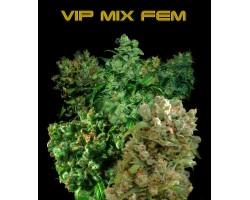 VIP MIX FEM