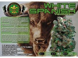 WHITE SPANISH