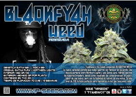 BL4QKFY4H WEED