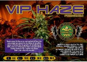 VIP HAZE