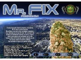 MR.FIX